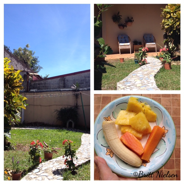 hotel garden and breakfast fruit