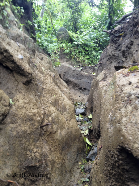 Deeply rutted Cerro Chato Volcano Trail